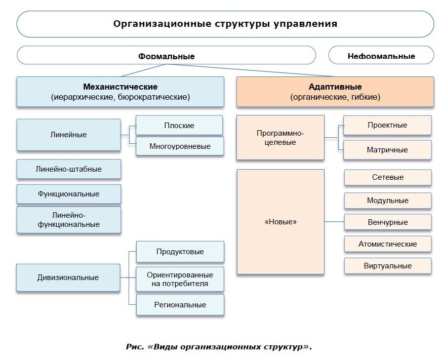 виды организационных структур фото